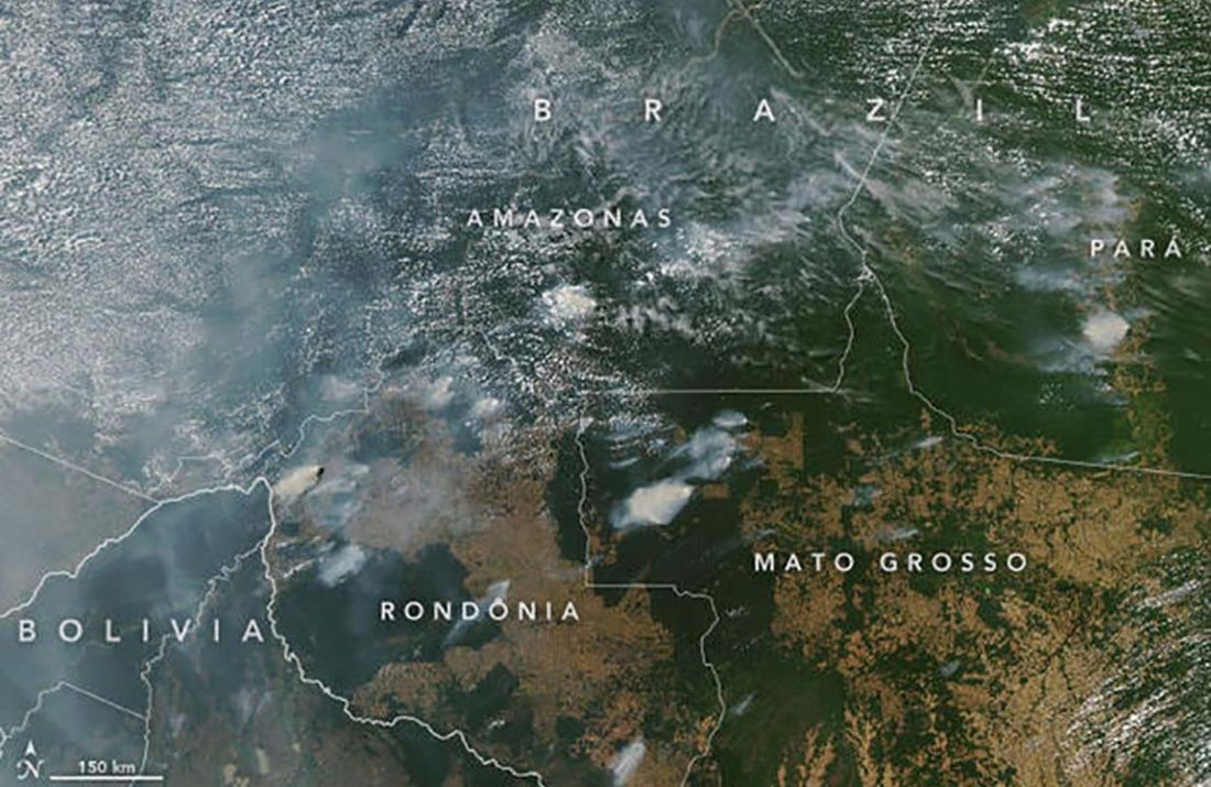 incendies forêt amazonienne